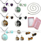 Silvery Moon Star Crystal Pendant Chain Necklace+ Pair Ear Stud+ Box Jewelry Set
