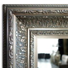 Elegance Wall Framed Mirror, Bathroom Vanity Mirror Champagne Silver