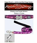 Premium Red Dingo Dog Collars & Leashes - Breezy Love Purple Hearts -  Pick Size