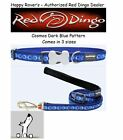 Premium Red Dingo Dog Collars & Leashes - Cosmos Dark Blue -  Pick Size