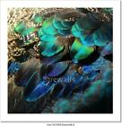 Colorful Peacock Feathers Art Print/Canvas Home Decor Wall Art Poster - C