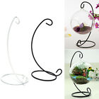 "Pop 23cm 9"" Iron Plant Stand Holder for Clear Glass Hanging Vase Home Decor BM"