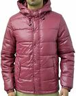 Mens Bellfield Designer Zip Up Hooded Puffa Padded Xenon Wine Bomber Jacket