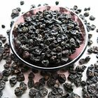 BLACK CURRANTS RIBES nigrum CASSIS Whole Dried Berries Anti-Oxidants