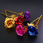 Gold Plated Rose Flower Romantic Valentine's Day Mother's Day Wedding Favor