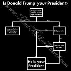Donald Trump Flowchart T shirt Is He Your President? image