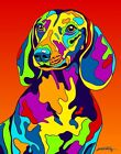 Made in USA Multi-Color Dachshund Dog Breed Matted Print Wall Decor