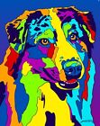 Made in USA Multi-Color Australian Shepherd Dog Breed Matted Print Wall Decor
