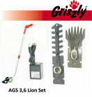 AGS 3,6 Lion Set Grizzly