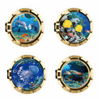 3d Porthole Ocean Animals Removable Wall Stickers Decals Pvc Mural Room Decor