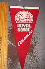 Royal Gorge Colorado, vintage Felt Pennant great collectible, 8 x 4 inches