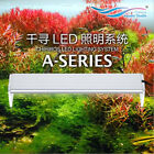 NEW Chihiros ADA Style Plant Grow LED light aquarium Water Plant Fish Tank 8000k