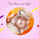 Freshwater Cultured Pearl Pendant Necklace Shell Design Silver Jewelry Gift