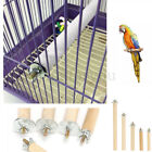 Parrot Pet Raw Wood Hanging Stand Rack Toy Parakeet Stick Perches for Bird Cage
