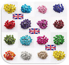 UK 40pcs Mini Christmas Foam Frosted Fruit Artificial Holly Berry Flower C172