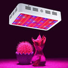 600W 1000W 1200W 2000W Double Chip LED Grow Light Full Spectrum For Indoor Plant