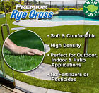 Premium Rye Grass Synthetic Landscape Turf (Includes Free Shipping)