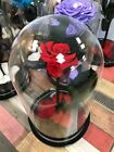Eternal Immortal Rose In Glass Dome. Original Beaty and the beast choopoff