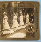 Stereoview H C White Company 5512 3 The Wedding March Bride Bridesmaids 1902 (O)