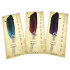 Antique Feather Pen Fountain Quill Dip Writing Stationery Teachers' Gift  Filmy