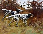 English Setters by Reuben Binks. Pets Art Reproduction Prints on Canvas or Paper