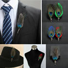 Mens Chic Handmade Peacock Feather Shirt Suit Hat Lapel Pin Brooch Accessories image