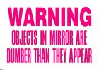WARNING OBJECTS IN MIRROR ARE DUMBER THAN THEY Funny Die Cut Vinyl Decal Sticker