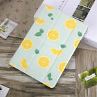 For iPad 10.2 7th Air 10.5 6th 5th 9.7 Lemon Leather Case Magnetic Smart Cover