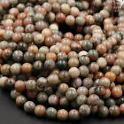 Dinosaur Coprolite Dung 4mm 6mm 8mm 10mm Fossilized Poop Beads 16' Strand