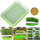 Seed Sprouter Tray Seed Germination Tray Nursery Tray BPA Free