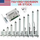 750/1000/1500/6000N Linear Actuator 12VHeavy Duty Electric Linearmotor Auto Lift