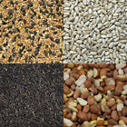 Bird Seed Wild Food Mix Feed Mixture Peanuts Sunflower Niger Suet Pellet Cereal