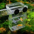 Transparent Fish Breeding Case Shrimp Hatchery Fish Isolation Tank S2M7