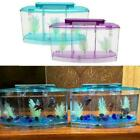 Acrylic Betta Fish Aquarium Fish Tank Box Separate Isolation Spawning Q0C4