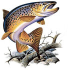 MONSTER BROWN TROUT  FISHING T-SHIRT S/S W/PKT