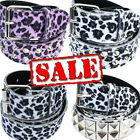 Leopard Belt - Sale Punk Rockabilly Rock Fancy Dress