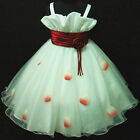 Reds Wedding Pageant Party Flower Girls Dress Age 2-10Y