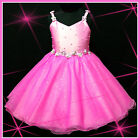 HP875 Hot Pink Christmas Party Flowers Girls Pageant Dresses SIZE 2-3-4-5-6-7-8Y