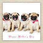 """Mothers Mums Day Blank Greetings Card Dogs Puppies """"Lots of cute designs!"""""""