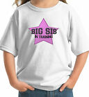 BIG SIS IN TRAINING FUN CUSTOM KIDS T-SHIRT sister white grey pink