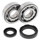 Main Crank Shaft Bearings Seals Kit Yamaha YZ250 1993 1994 1995 1996 1997 1998