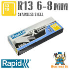Rapid R13 (13 Series) Stainless Steel Staples 2500 Box 6 & 8mm (R13, R23, R33)