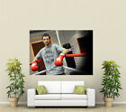 Carl Froch Boxing Giant 1 Piece  Wall Art Poster SP240