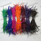 Wholesale lots 500pcs Decorative loose Dyed goose biot feathers Trimming Pick