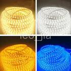Lot 220V 4 Colors SMD 3528 Flexible LED Strip Lights 60LEDs /Meter Ip65 + Plug