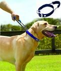 Patento Quick Control Dog Collar with integrated Built-in short leash Large E01