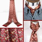 Gift Mens 100% Mulberry Silk Long scarf Scarives Double Layer For Winter Spring