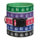Pawprint Two Tone Dog Collar Selections - Stylish Paw Print Reinforced Ribbon