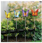Solar Butterfly Garden Stake Choice of Colors Blue Yellow Purple Orange