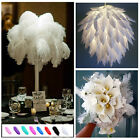 Top Wholesale 6-26inch 10/20/50pcs Natural Ostrich Feathers Wedding Party Decor
